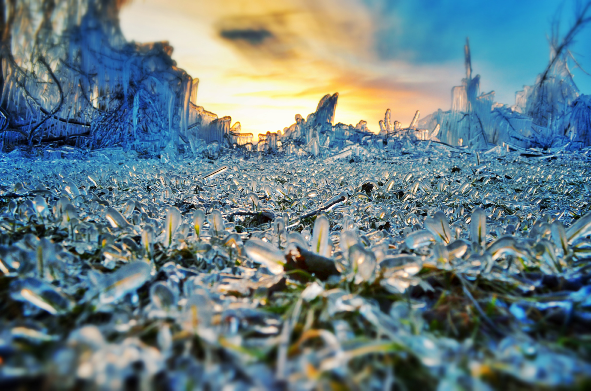 HDR Icy Ground Cover